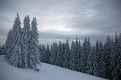 Bukovel ski resort 2 Royalty Free Stock Image
