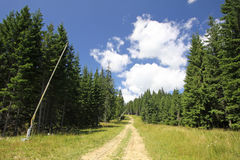 Bukovel ski resort in summer. Carpathians, Ukraine Stock Images