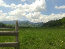 Bukovina Fotografia Stock