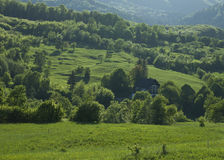 Bukovina Landscape Stock Photo