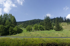 Bukovina Royalty Free Stock Photography