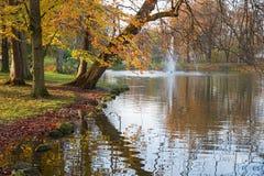 Bukowi drzewa w jesiennych kolorach, zdrój uprawiają ogródek zły aibling Obraz Stock