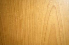 bukowy tekstury drewna Zdjęcia Royalty Free