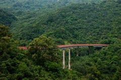 Buktade förlängningen för den OKTOBER utbildar den östliga Shenzhen Meisha teströmmen dalen av skogarna i bergen järnvägen Arkivfoto