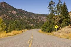 Buktig huvudväg och tecken Arkivbild