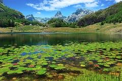 Bukumirsko lake Stock Image