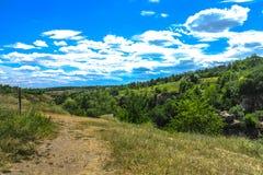 Buky jaru krajobraz 20 zdjęcie royalty free