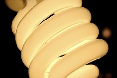 Bulb. Energy saving bulb Royalty Free Stock Photos