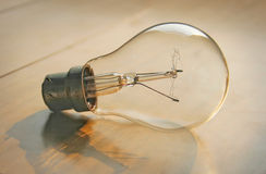 Bulb, Royalty Free Stock Images