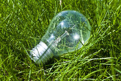Bulb. In grass.Impact on environment Royalty Free Stock Photography