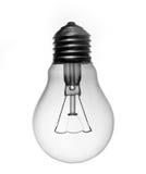 Bulb Stock Image