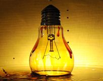 Bulb 3 Stock Image