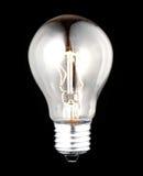 Bulb Royalty Free Stock Photo