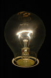 Bulb On. In the darkness Stock Images