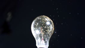 Bulb being crushed by a shot stock video footage
