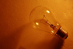 Bulb in brown. Light stock photos
