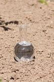 Bulb with clear water on dry soil Royalty Free Stock Image