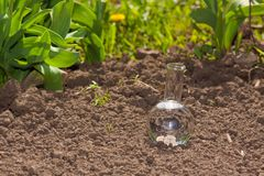 Bulb with clear water on dry soil Royalty Free Stock Photo