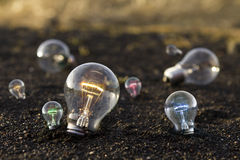 Bulb with colours Royalty Free Stock Photo