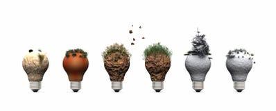 bulb and ecosystems Stock Photos