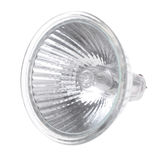 Bulb G4. Isolated on white background Stock Photography