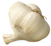 Bulb of garlic Stock Image