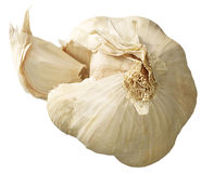 Bulb of garlic Royalty Free Stock Image