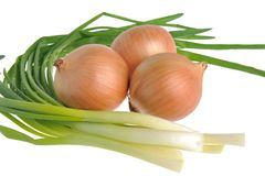 Bulb and green onion isolated on white Royalty Free Stock Photos