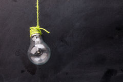 Bulb with green wool Royalty Free Stock Photo