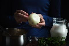 Bulb in hand, ingredients for bechamel sauce Stock Images
