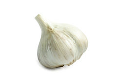 Bulb Head of garlic isolated on white background with shadow Stock Images