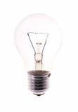Bulb isolated on white Royalty Free Stock Image