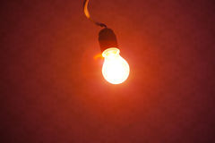 Bulb lamp light Royalty Free Stock Photos