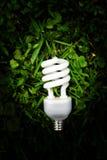 Bulb light Stock Photo