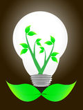 Bulb light with young shoots Royalty Free Stock Photos