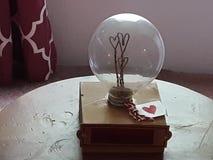 Bulb stock photos