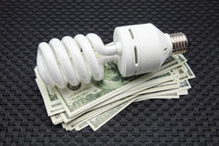 Bulb of low consumption Royalty Free Stock Photography