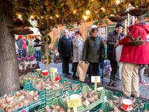 Bulb market stall on Xmas Market in Manchester Stock Images