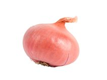 Bulb onion Stock Images