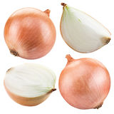 Bulb onion isolated on a white. royalty free stock photography