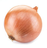 Bulb onion. stock images