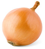 Bulb onion Royalty Free Stock Photo