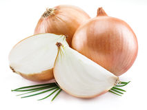 Bulb onions and green onions isolated. Stock Images