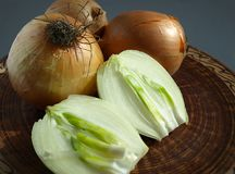 Bulb onions. royalty free stock images