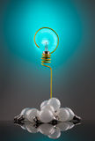 Bulb question Royalty Free Stock Photos