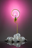 Bulb question Royalty Free Stock Photography