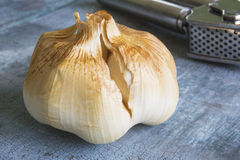 Bulb Of Smoked Garlic On Wooden Surface With Press Royalty Free Stock Image