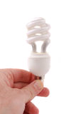 Bulb of spiral type Royalty Free Stock Photos