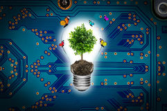 Bulb with a tree on a computer circuit board. Stock Photos
