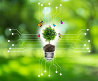 Bulb with a tree on a computer circuit board. Royalty Free Stock Photo